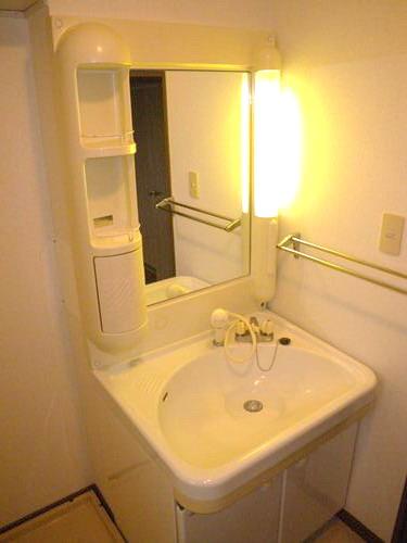 エクセルE・F / 301号室洗面所
