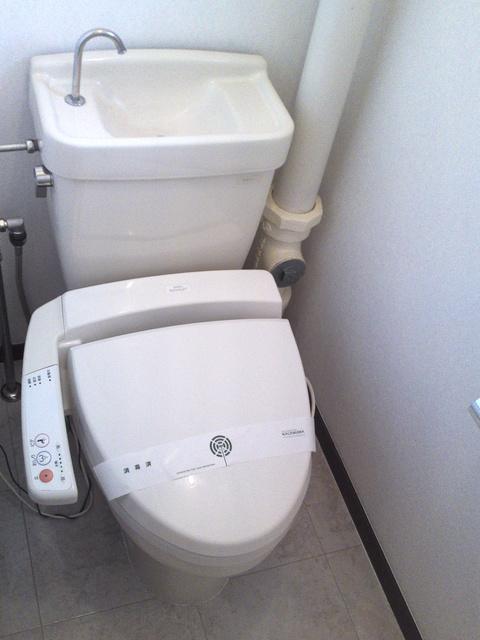 アイビーハイツ / 303号室トイレ