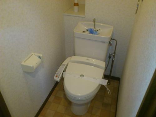 ハイ・アルブル迎田 / 301号室トイレ
