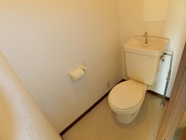 ハイ・アルブル迎田 / 401号室トイレ