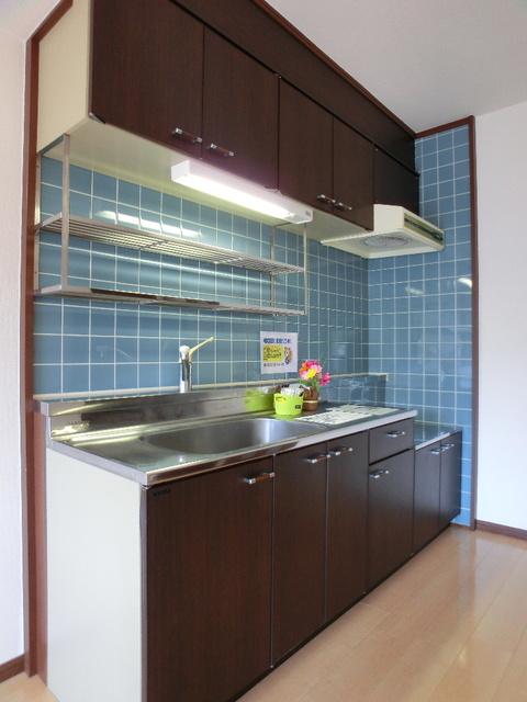レジデンス・ウィステリア24 / 307号室キッチン