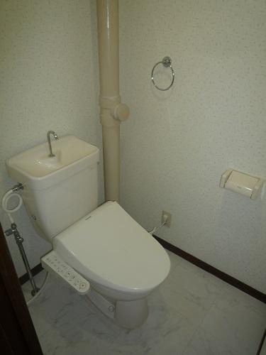 ヴィラフェリス空港南 / 102号室トイレ