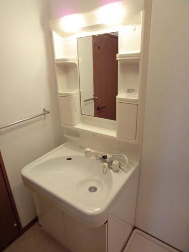 キャピタル長者原 / 405号室洗面所