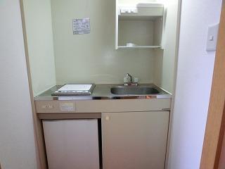プレデュパルク壱番館 / 203号室キッチン