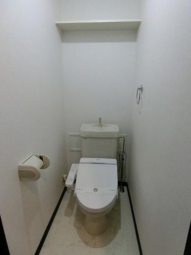 アイビーハイツⅡ / 205号室トイレ