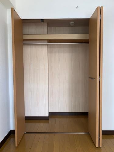 スクレーパー東 / 203号室収納