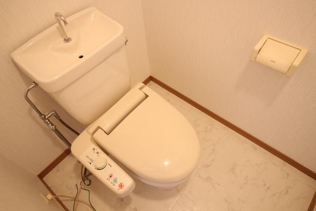ピオーネテラス空港南 / 502号室トイレ