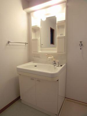 ルミエール21 / 301号室洗面所