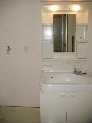 ルミエール21 / 502号室洗面所