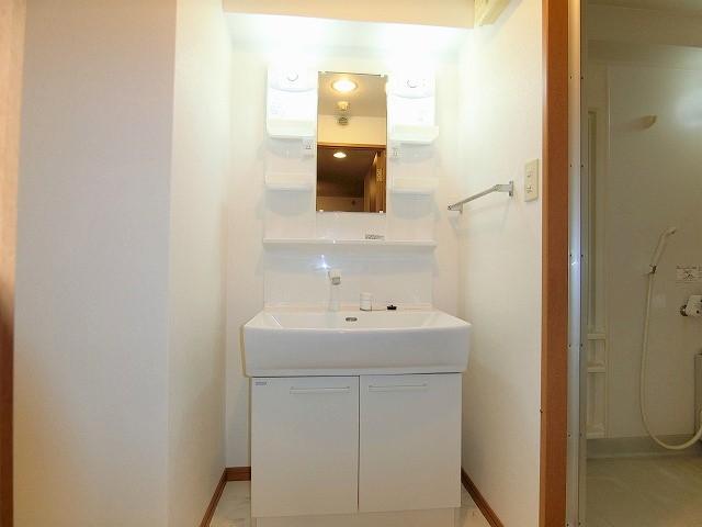 ジュノーパレス / 203号室洗面所
