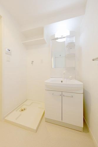 アルティメゾン博多 / 901号室洗面所
