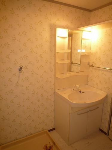 コーポラス梅津 / 105号室洗面所