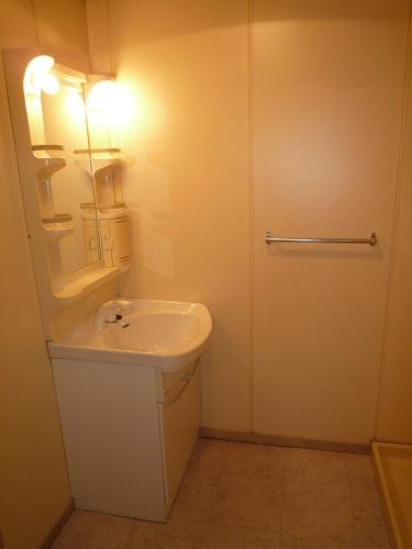 本園ビル / 401号室洗面所