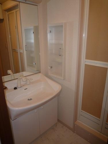 グランシャリオ / 401号室洗面所
