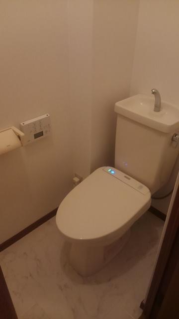 ティアラ 安川 / 101号室トイレ