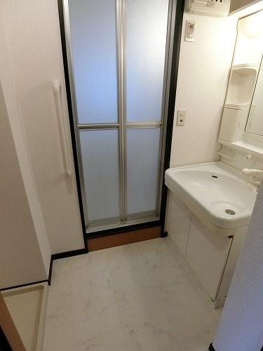 ルミエール・アーサ / 202号室洗面所