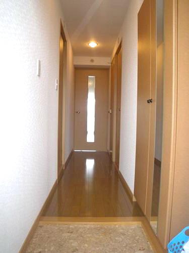 シングレート・ヒルズ / 202号室玄関
