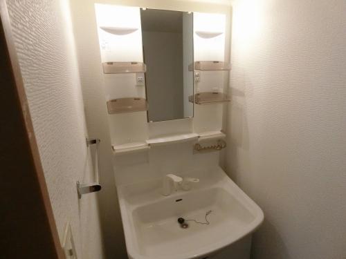 シャトレ東 / 201号室洗面所