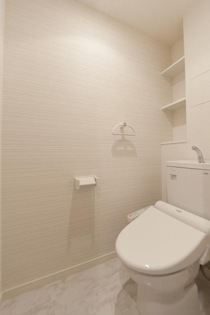 エクセレントハイツ / 201号室トイレ