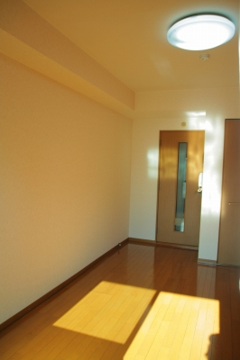 ルミノスコート / 507号室洋室