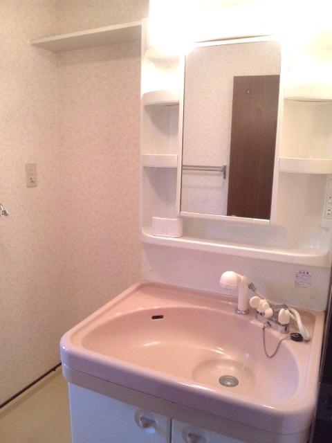 サンシャイン篠栗 / 2-401号室洗面所