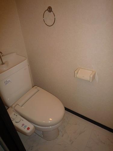 スクレーパー東 / 501号室トイレ