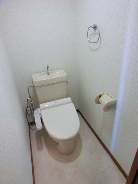 グランベルデ丸善 / 505号室トイレ