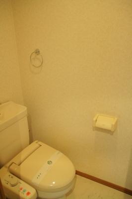 ルミノスコート / 807号室トイレ