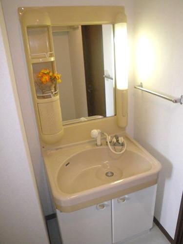 レジデンス・ウィステリア24 / 407号室洗面所