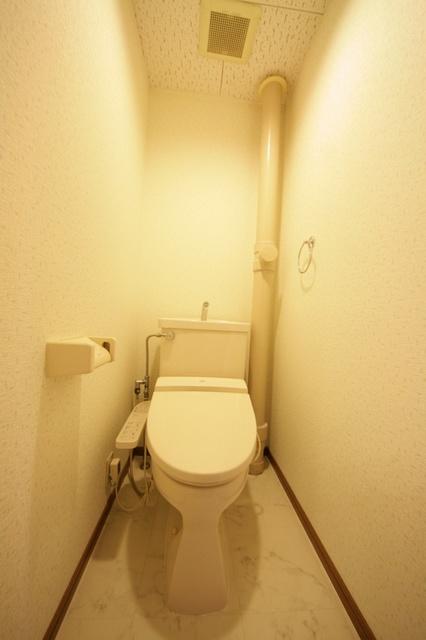 スカイヒルズ6 / 202号室トイレ