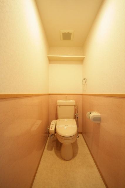 クリア吉塚 / 402号室トイレ
