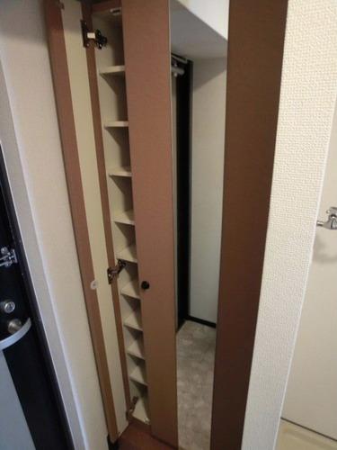スクレーパー東 / 505号室収納