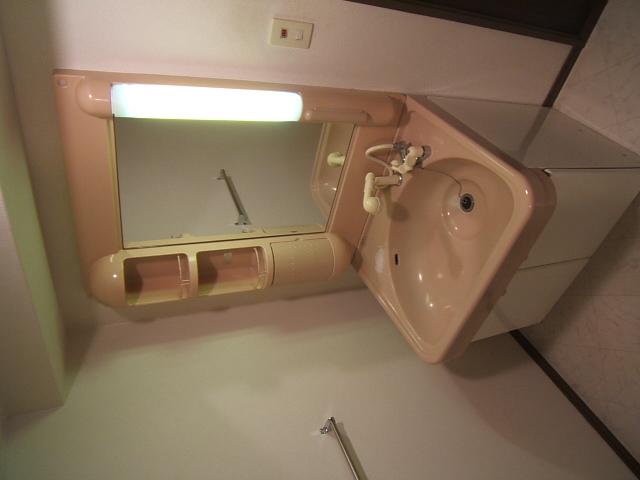 ハイ・コート / 402号室洗面所
