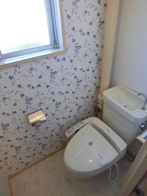 アイビーハイツ / 105号室トイレ