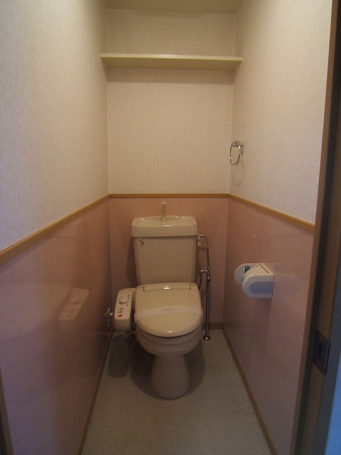 クリア吉塚 / 105号室トイレ