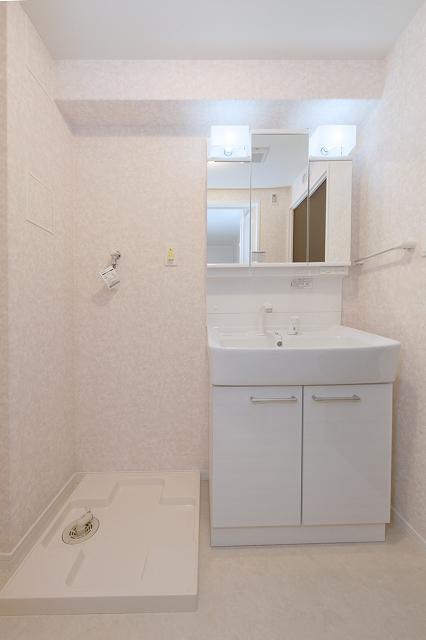 グランドルーチェ駅南 / 701号室洗面所