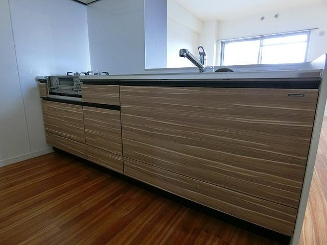 ディア・コート / 201号室キッチン