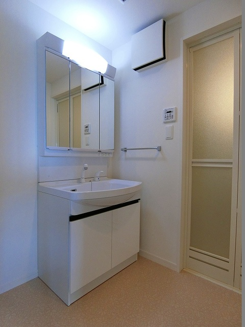ディア・コート / 202号室洗面所