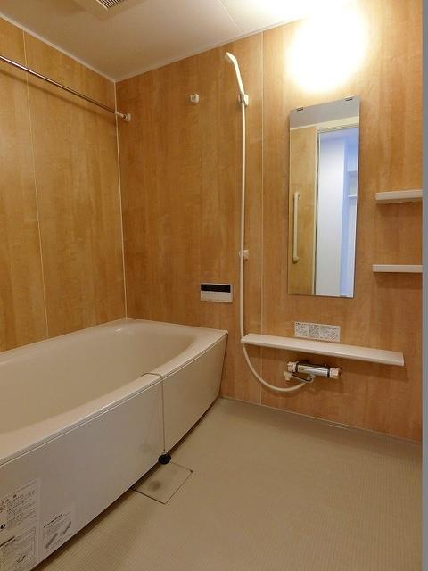 ディア・コート / 601号室洗面所