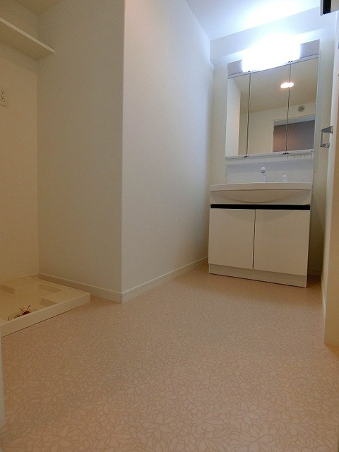 ディア・コート / 1001号室洗面所