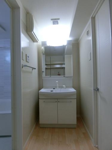 ファミリア伊都 / 301号室洗面所