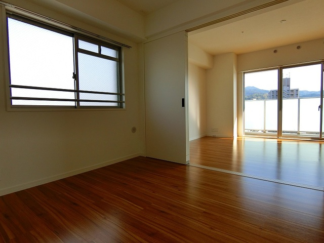 ディア・コート / 203号室その他部屋・スペース