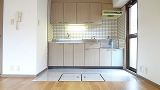 シュロスフィールド28 / 705号室キッチン