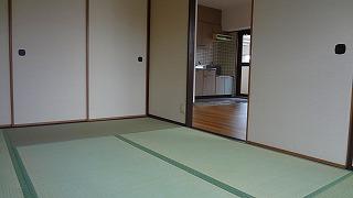シュロスフィールド28 / 205号室和室