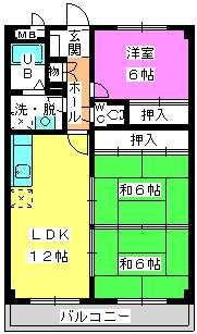 コーポユキⅡ / 203号室間取り