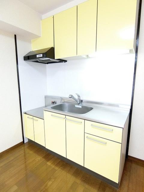 シャトー渡辺 / 205号室キッチン