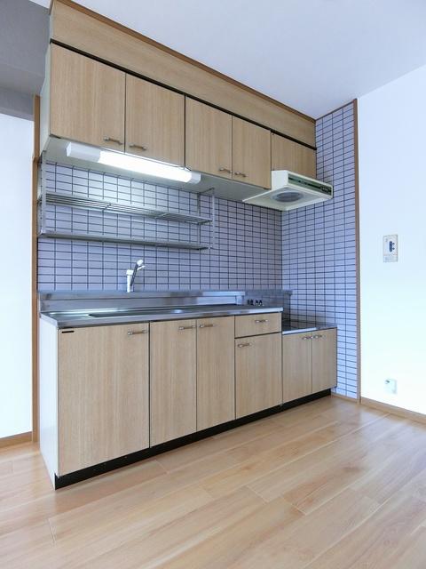 シャトレ壱番館 / 503号室キッチン