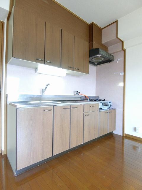 アネックスけやき通り / 102号室キッチン