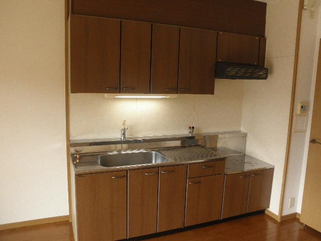 レジデンス俗明院 / 105号室キッチン