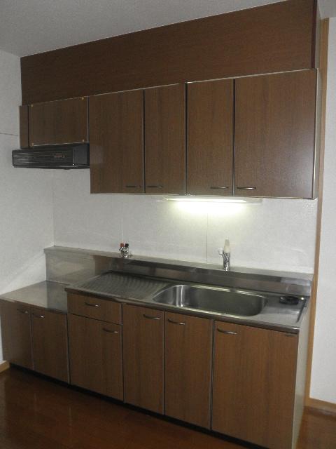 レジデンス俗明院 / 402号室キッチン